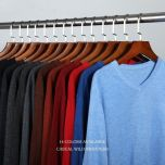 14-Color Autumn New Men Knitted Pullover Cashmere Sweater Casual Business V-Collar Thin Slim fit Sweaters Brand Clothes